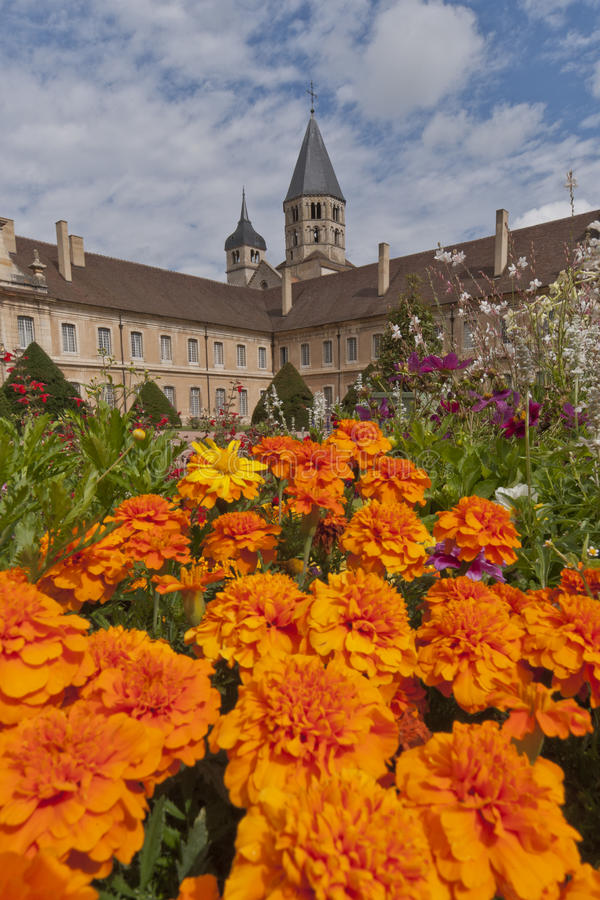 Tower of cluny abbey behind flowers royalty free stock image