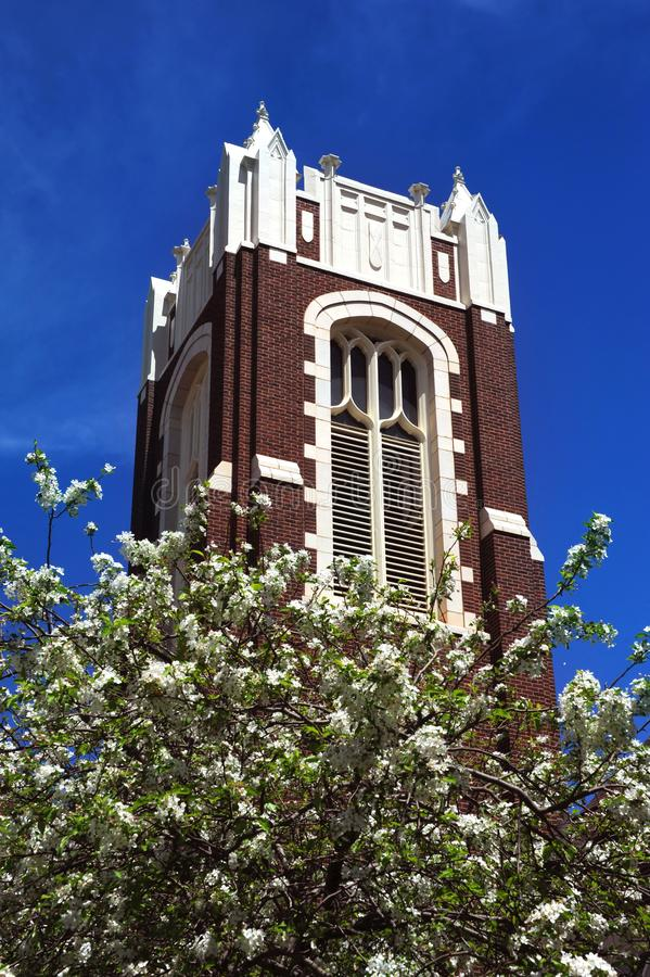 Blue Sky and White Blooms against Church Brick stock photography