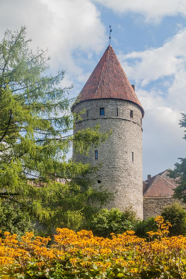 Tower at the fortification walls in the old town of Tallinn, Eston. Ia royalty free stock image