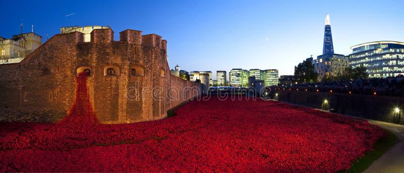Tower von London und Mohnblumen an der Dämmerung lizenzfreie stockfotografie