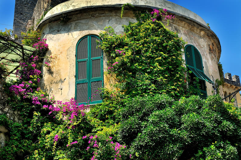 Tower with window shutters and bougainvilleas in village Portovenere, Cinque Terre royalty free stock images