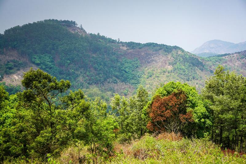 Towering mountain ranges of Servarayan hills, Yercaud. Towering mountain ranges of Servarayan hills with lush green vegetation, Yercaud, Tamil Nadu stock images