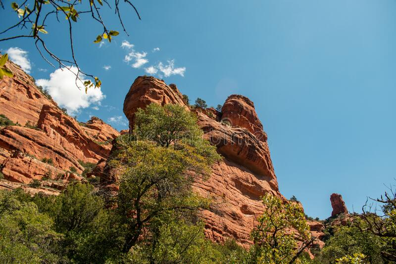 Towering red rocks of Sedona. Looking up at the beautiful, towering red rocks of the Verde Valley in Arizona royalty free stock photo