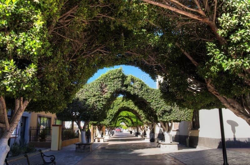 town för Baja California loretomexico sur royaltyfria foton