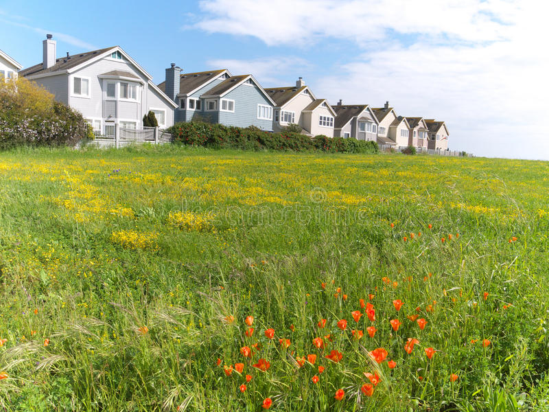 Download Town Houses On Green Meadow Stock Image - Image: 13949677