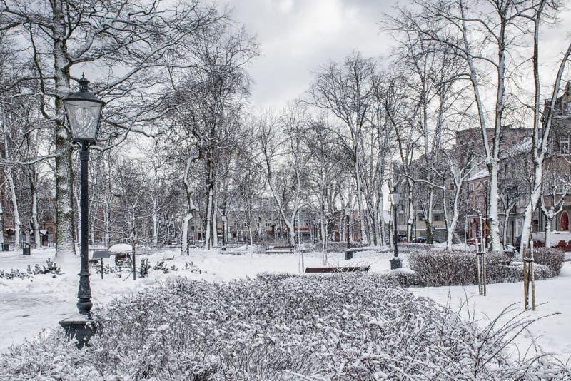 Town park in winter. Town park cowered with snow. Elk, Masuria. Poland stock photos