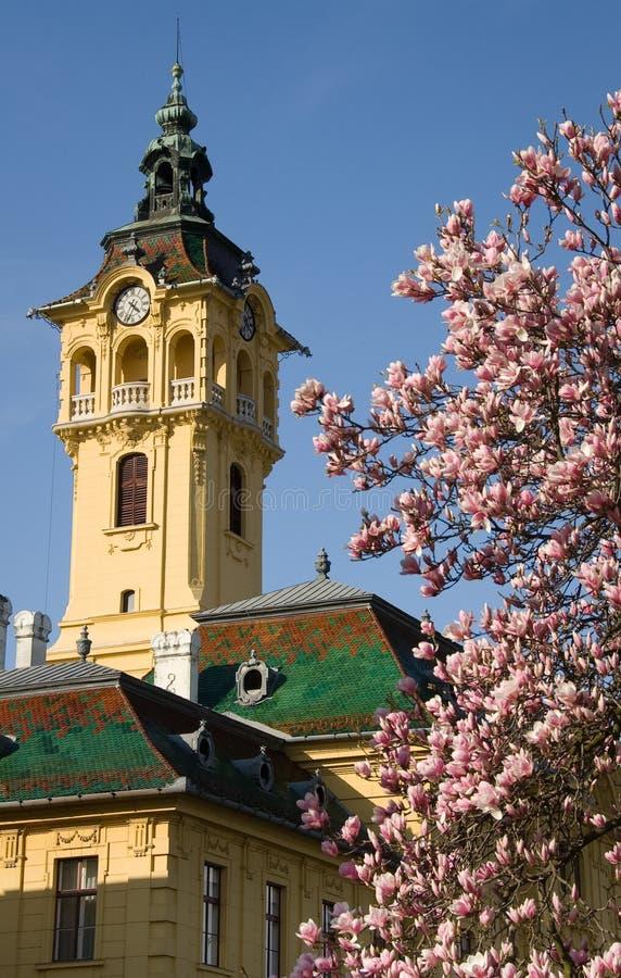 Townhall de Szeged foto de stock royalty free