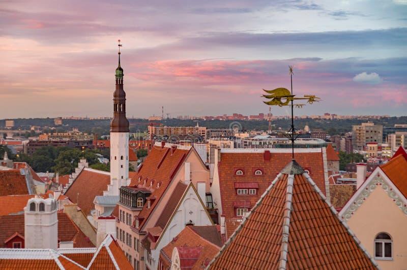 Townhall i czerwień dachy przeciw zmierzchu niebu, Tallinn obrazy royalty free