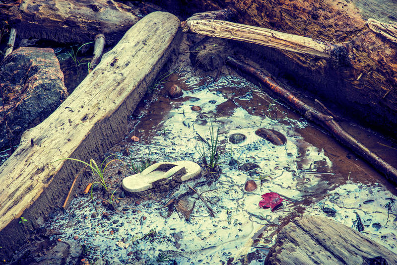 Toxic Waste at a Beach. A muddy pool of water at a beach contaminated with toxic chemical gasoline waste surrounded by driftwood. Small patches of green grass stock photography