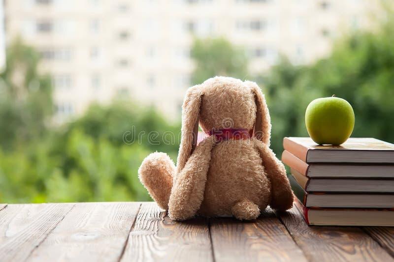 Toy Bunny que sentam-se para trás, mentira ao lado de uma pilha de livros e Apple verde Conceito em antecipação ao ano escolar no imagem de stock