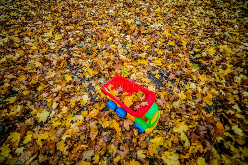 Toy car and fall leaves background. Fun in autumn season royalty free stock images