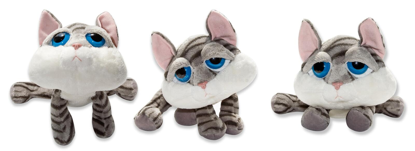 Toy cat stock images
