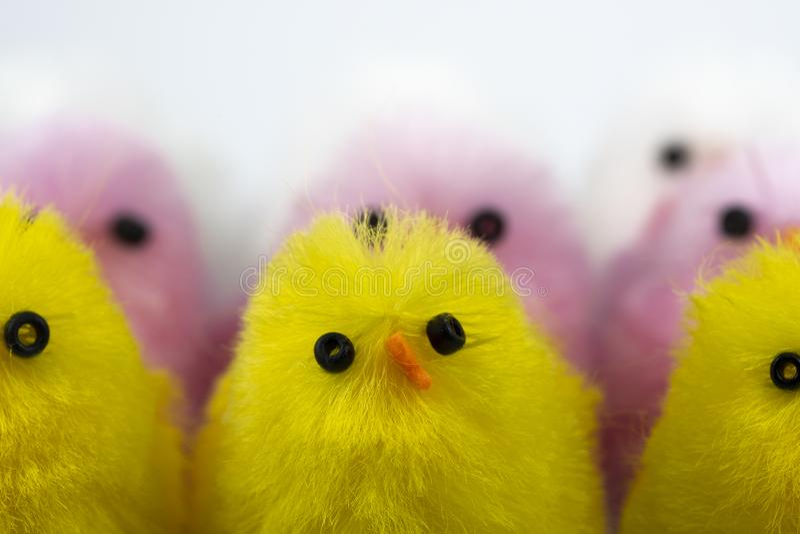 Toy Chicks royalty-vrije stock foto's