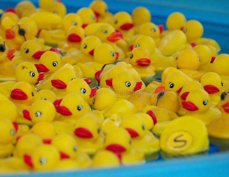 Toy ducks royalty free stock image
