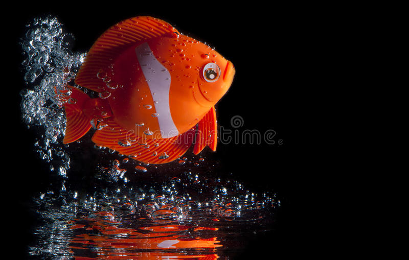 Toy Fish Splashing royalty free stock image
