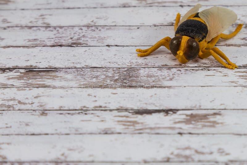Toy Fly Insect plástico amarelo no fundo de madeira imagem de stock