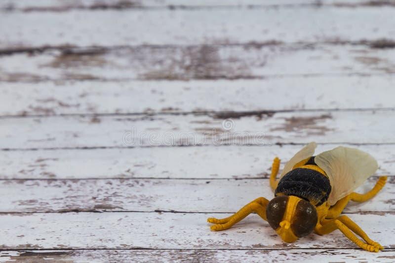 Toy Fly Insect plástico amarelo no fundo de madeira imagens de stock