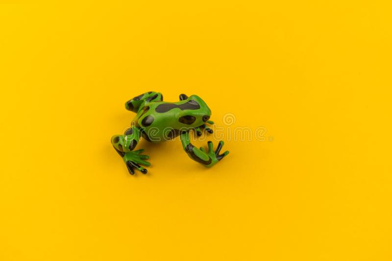Toy frog from plastic on a yellow background stock image