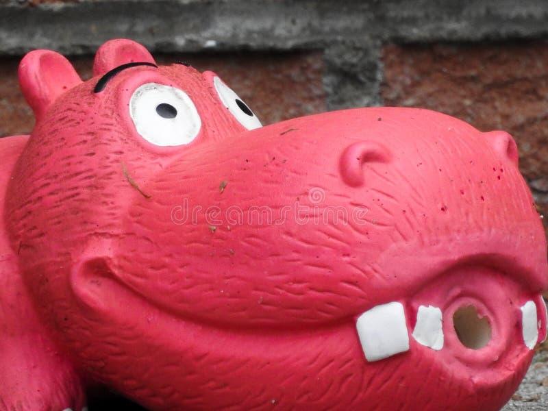Toy Hippo stockfotos