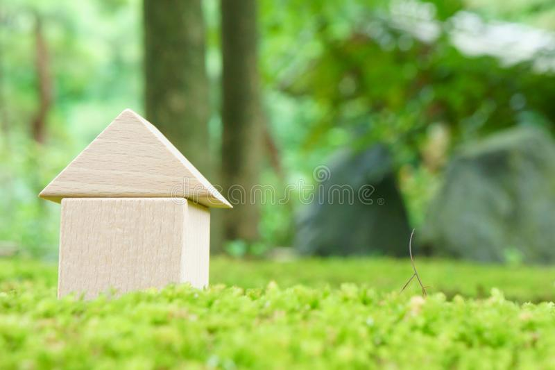 Download Toy house on moss stock photo. Image of blue, construction - 21584012