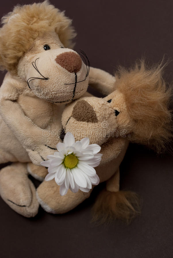 Toy lions. With chrysanthemum isolated stock photo
