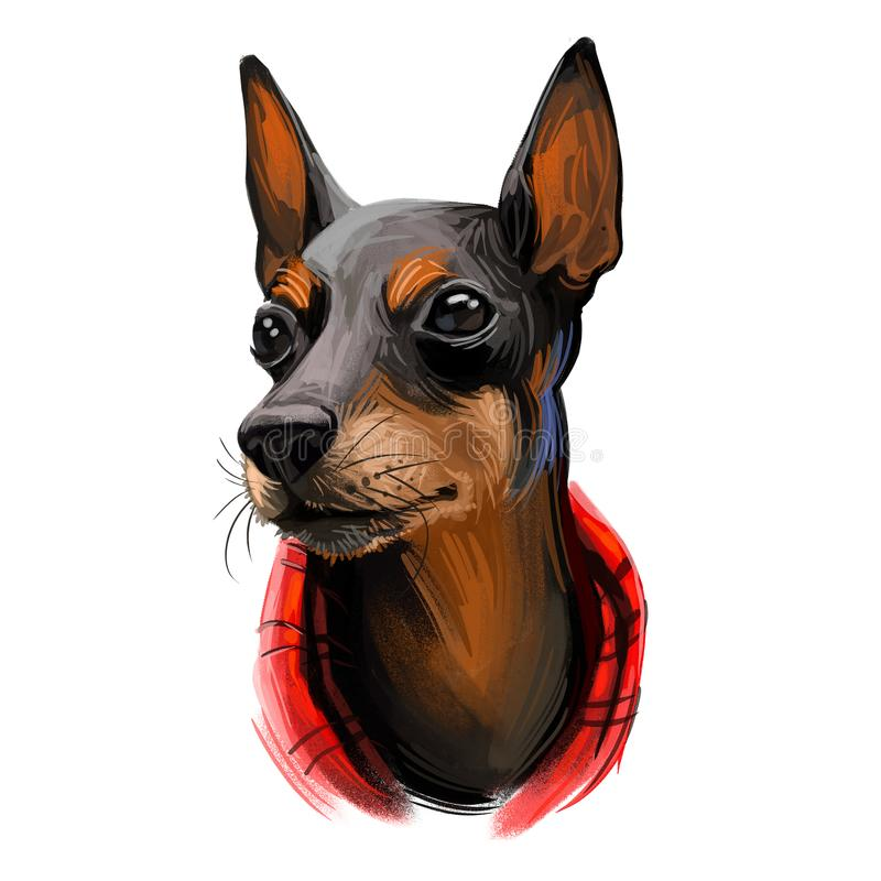 Toy Manchester Terrier dog breed portrait isolated on white. Digital art illustration, animal watercolor drawing of hand drawn vector illustration