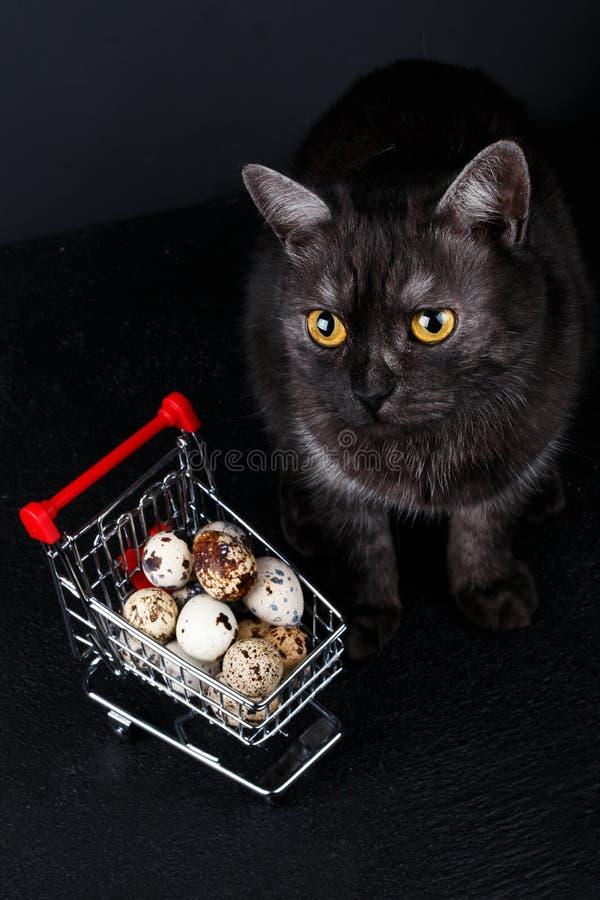 Toy mini muniature shopping cart stock photos
