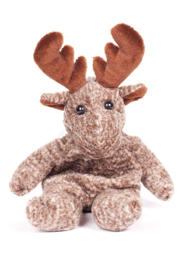 Toy Moose. Plush toy moose on white background stock photography