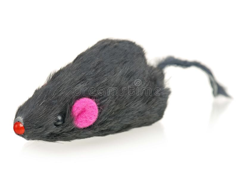 Toy mouse royalty free stock image