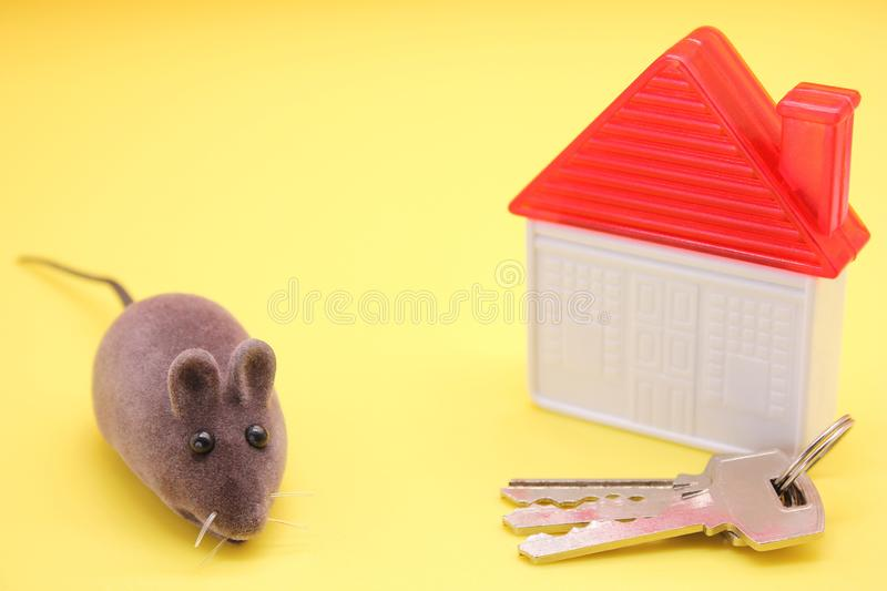 Toy mouse-a symbol of The new year 2020, next to a plastic toy house and real keys to the house stock images