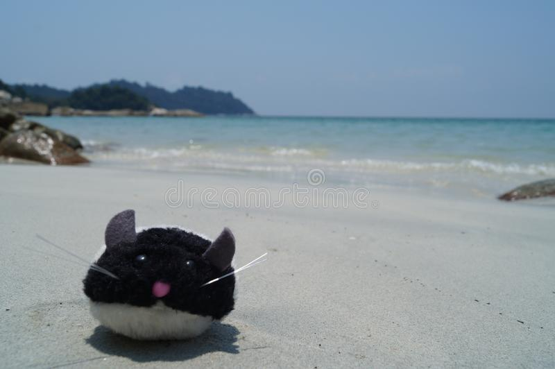 Toy mouse on the tropical beach. Symbol of New Chinese year. Toy, symbols, new, year, tropical, beach, christmas, concept, background, sea, travel, winter royalty free stock photo