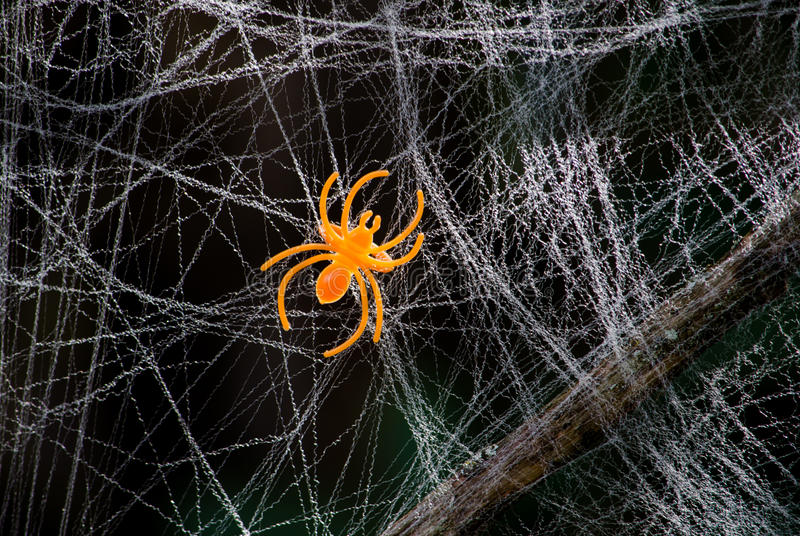 Toy orange spider in a fake web royalty free stock photo