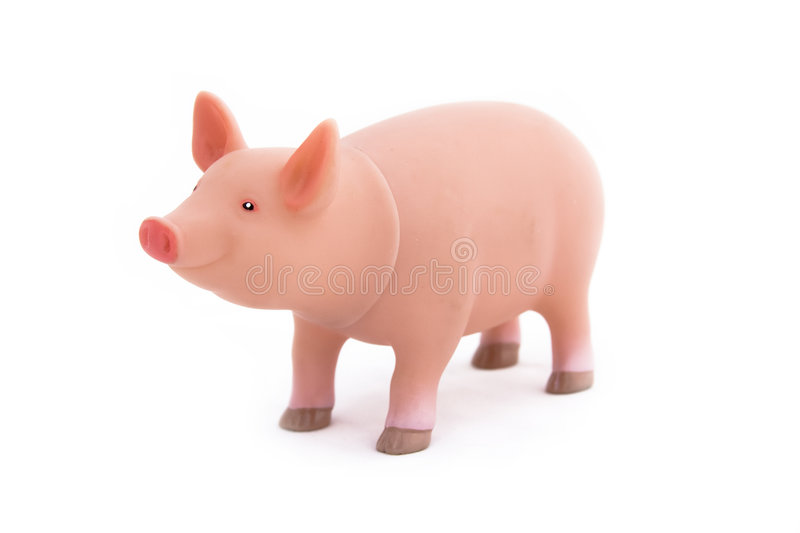 Toy Pig stock images