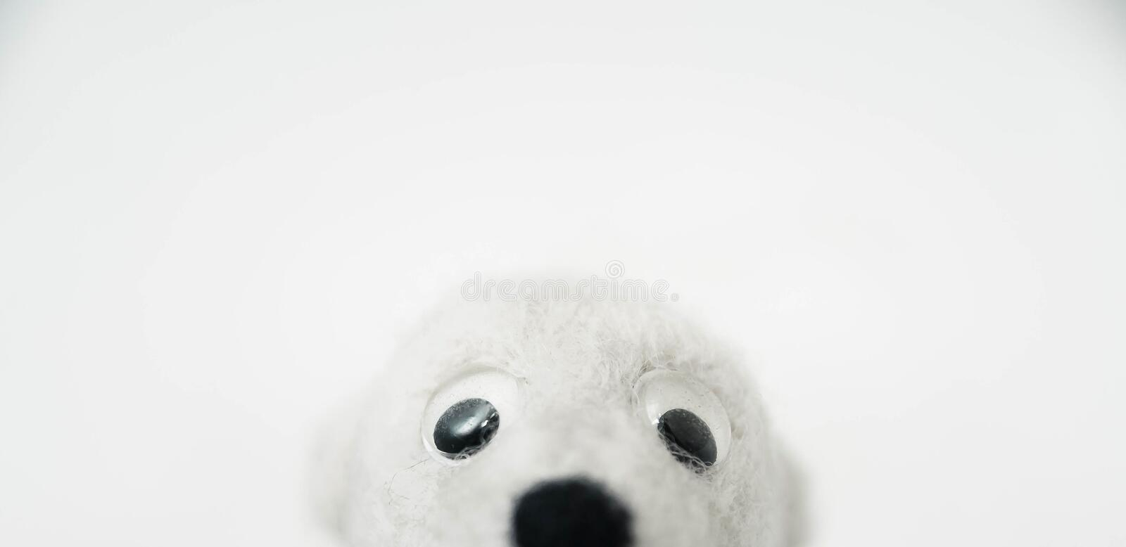 Toy polar bear made of felted wool looking out of the bottom of the frame on white background. A toy polar bear made of felted wool looking out of the bottom of stock photos