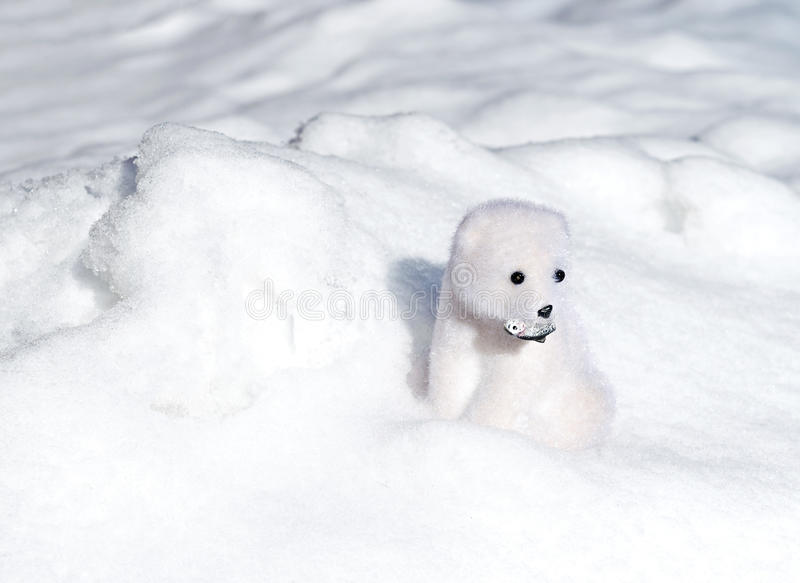 Toy polar bear in snow. Toy white bear with fish in snow royalty free stock images
