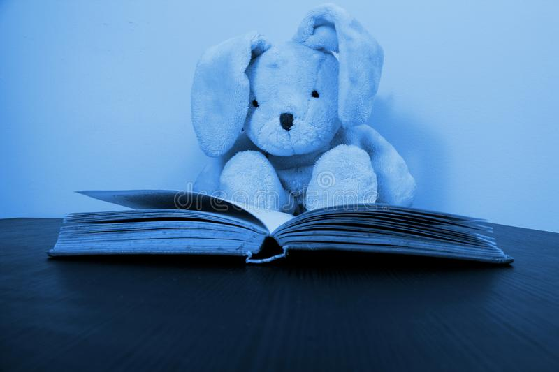 A rabbit plush toy sitting behind an open book stock images