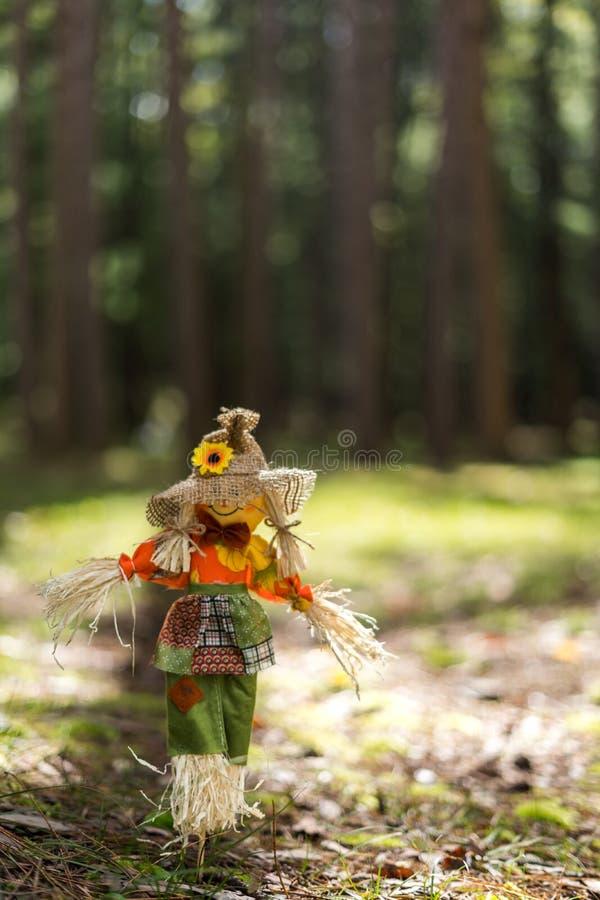 Toy Scare Crow en hierba en un bosque imágenes de archivo libres de regalías