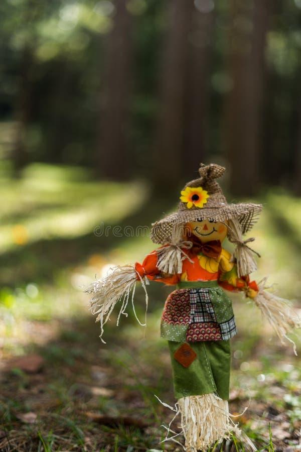 Toy Scare Crow en hierba en un bosque fotografía de archivo libre de regalías