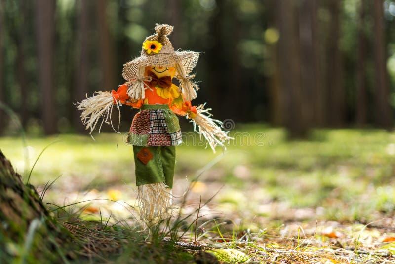 Toy Scare Crow i gräs i en skog arkivfoto