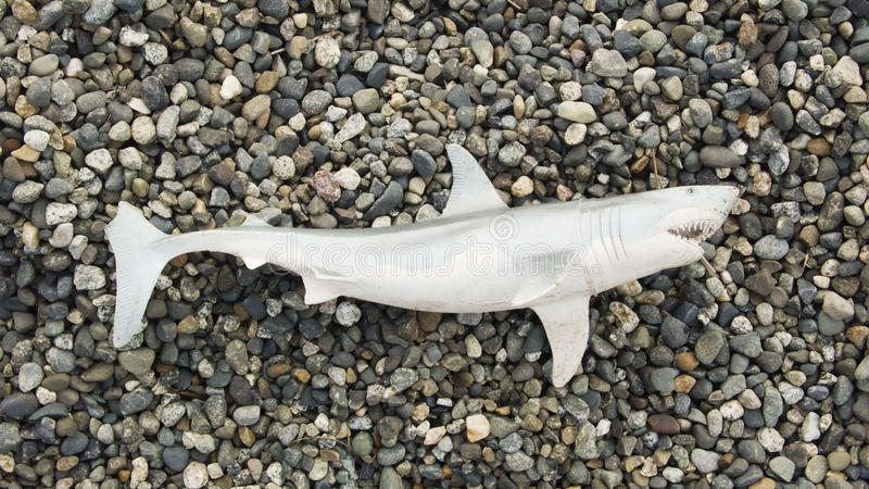 Toy Shark On Beach Royalty Free Stock Image
