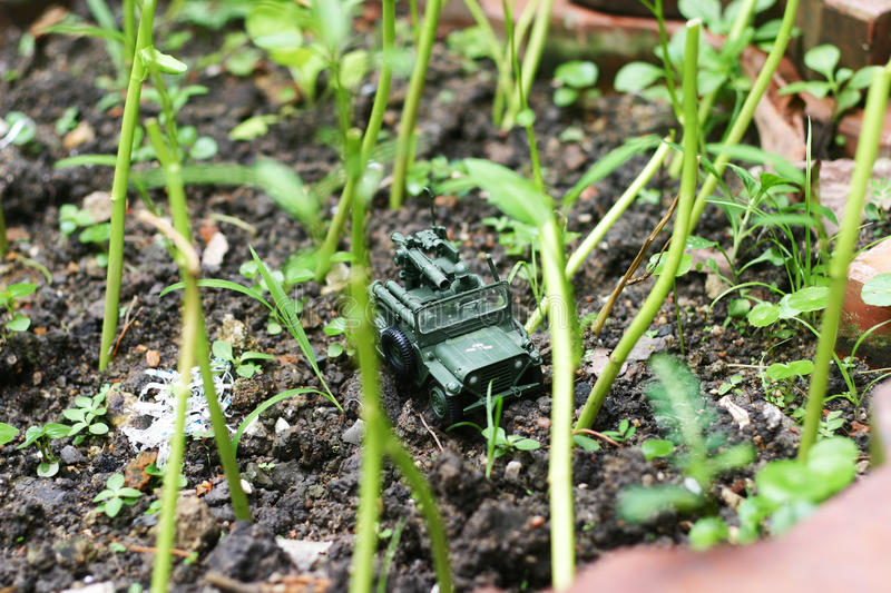 Download A Toy Soldier Through The Backyard Garden Royalty Free Stock Photos - Image: 26185928