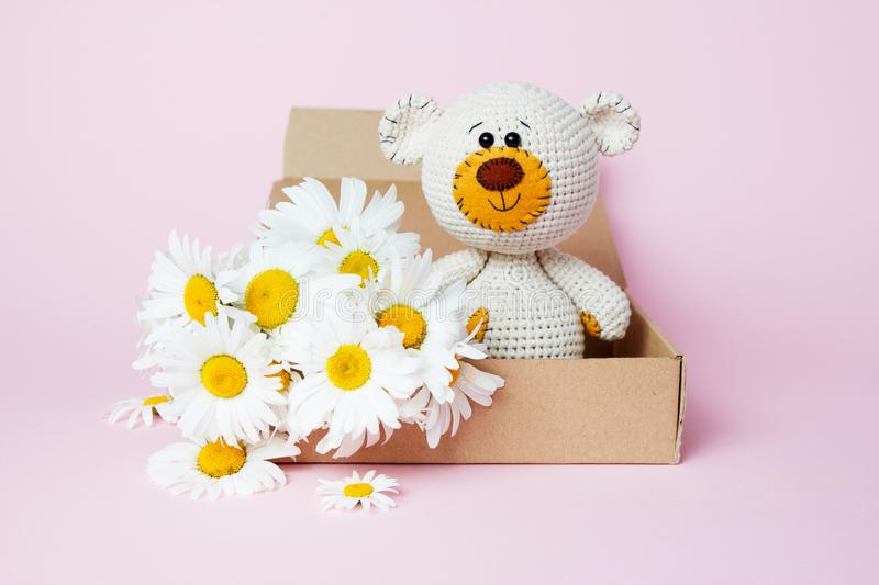 Toy teddy bear in a craft box with daisies isolated on a pink background. Baby background. Copy space, top view royalty free stock photo