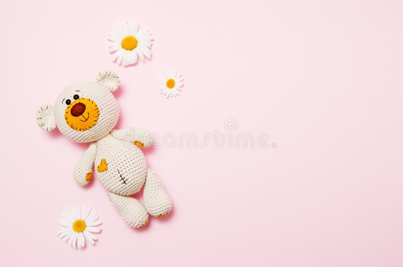 Toy teddy bear with daisies isolated on a pink background. Baby background. Copy space, top view stock photo