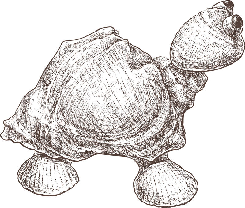 Toy Turtle vektor abbildung