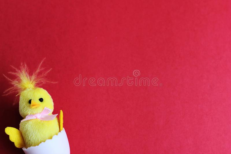 A toy yellow chicken hatched from a white egg. happy Easter. Space for text royalty free stock photography
