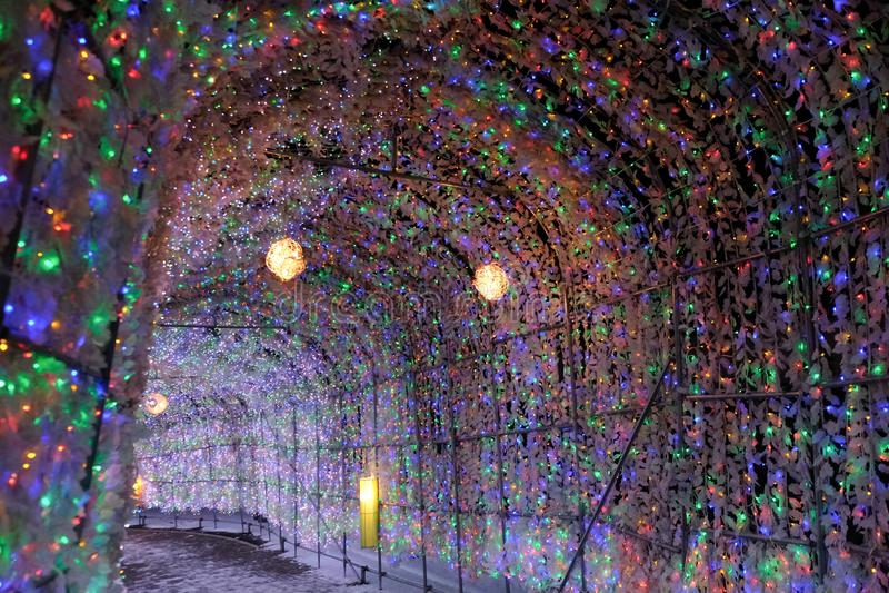 Toya Lake, Hokkaido Japan - 17 november 2019: Schitterend geleide gloeilamp-tunnel tijdens het wintersneeuwfestival licht op in d stock foto's