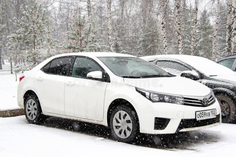 Toyota Corolla arkivbilder