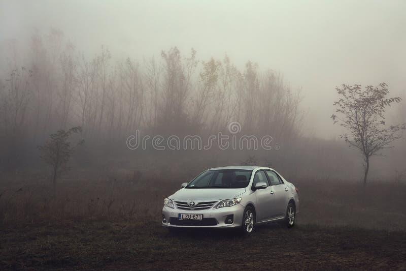 Toyota Corolla i dimman royaltyfri foto