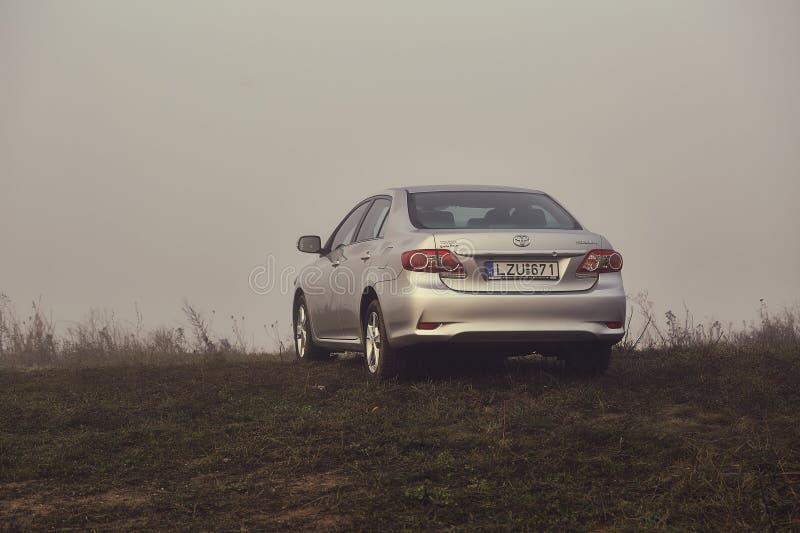 Toyota Corolla i dimman arkivbilder