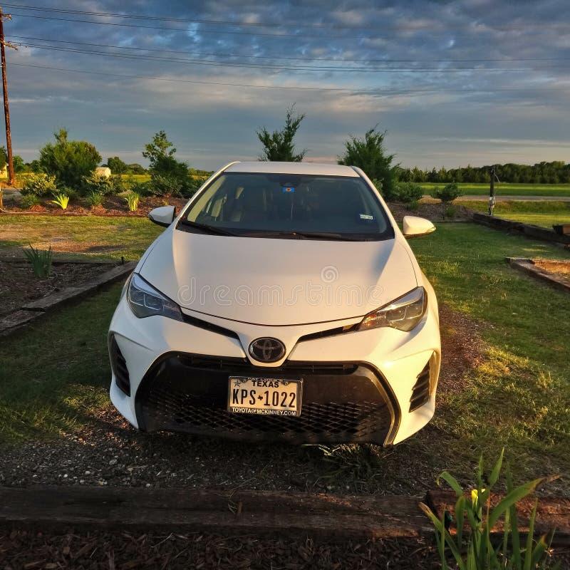 Toyota Corolla SE 2018 arkivfoton
